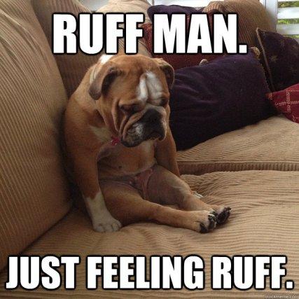 puppy sad