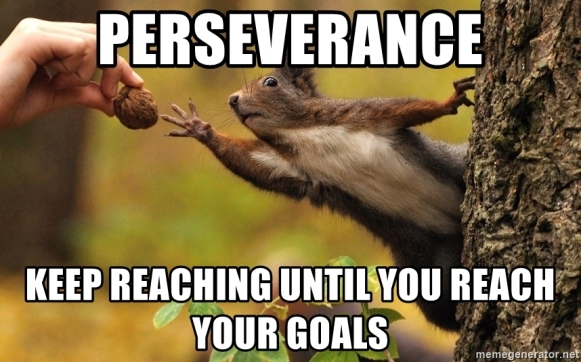 perseverance-keep-reaching-until-you-reach-your-goals